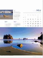 Calendar Page: 5