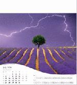 Calendar Page: 7