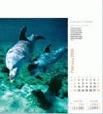 Calendar Page: 2